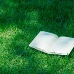 「地域おこしってなに?」って人は読んでみて!30分で読めるマンガ「地方は活性化するか否か」がすごい!