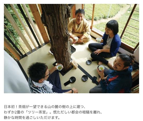 2016年新茶スタート オーナー募集開始いたしました 奈良 月ヶ瀬 みんなの茶畑 UMEZUKI|梅月