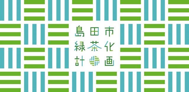 Shimada green ci tea 02